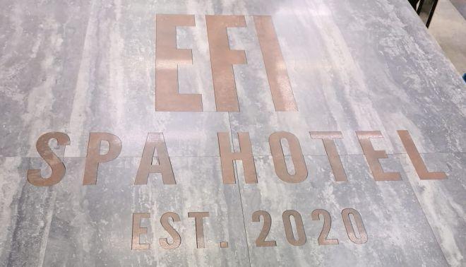 Logo EFI Spa